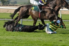 the horse raced past the barn fell
