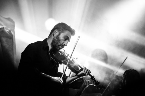 violinist-407185_1280